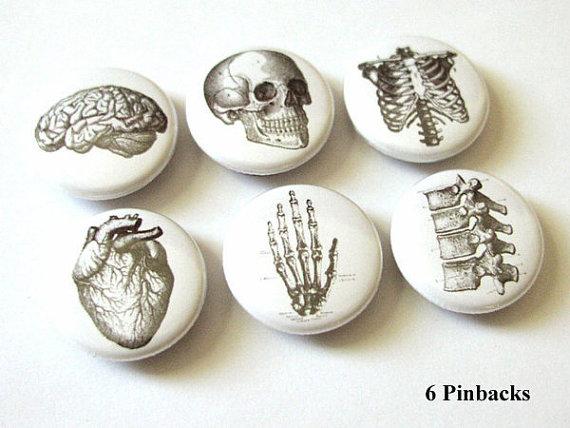 Anatomy Pinbacks