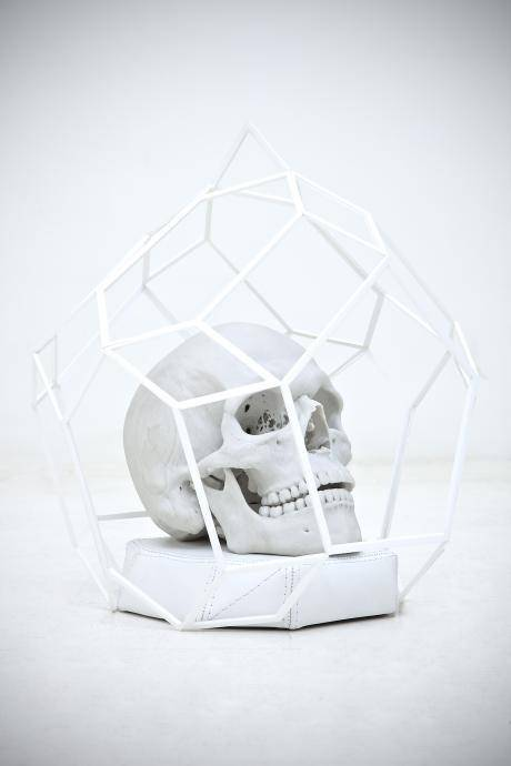 Caged Skull