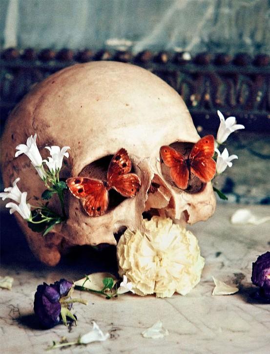Skull butterflies and flowers