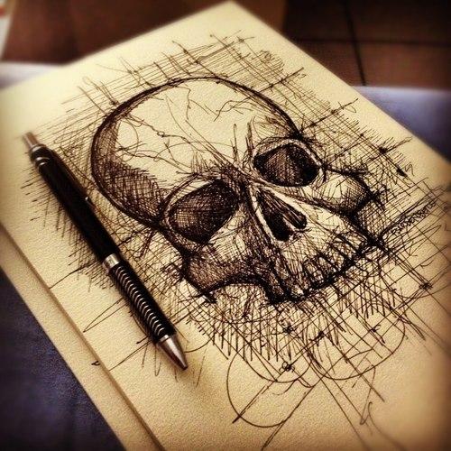 Skull drawing by Felipe Sardenberg