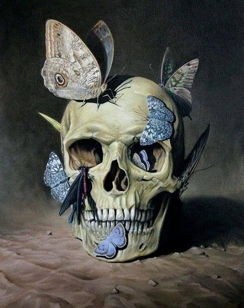 Vanitas skull