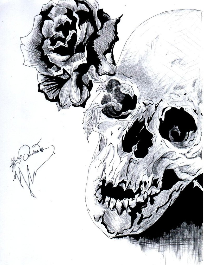 rose skull by ghostshark