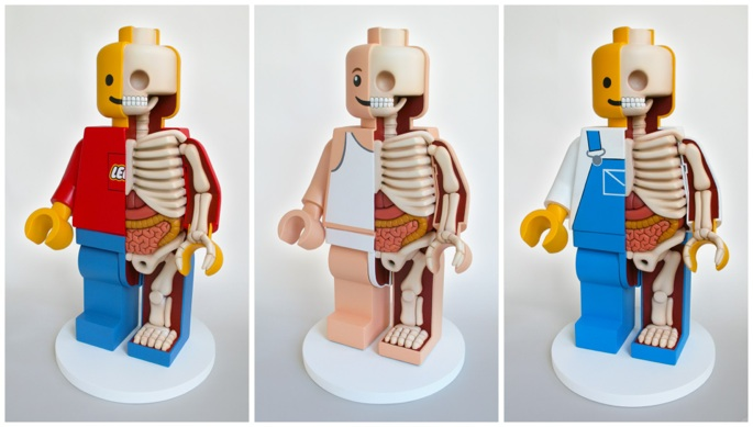 Anatomical Lego© Men