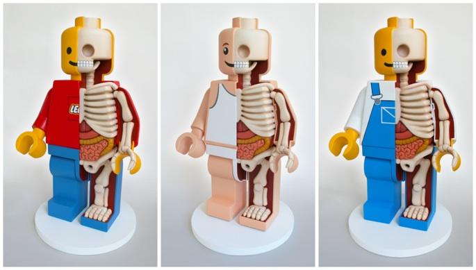 Anatomical Lego© Men