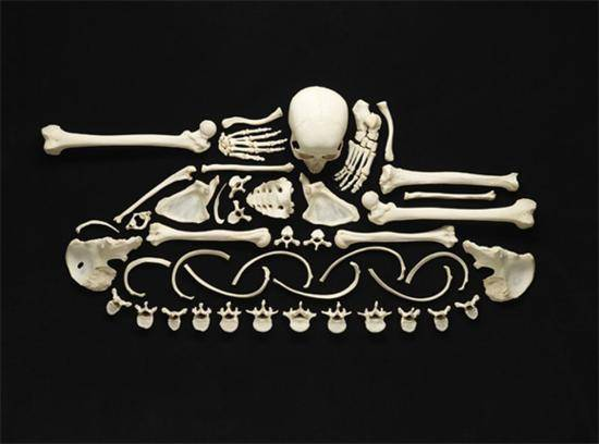 Skull and Bone Sculptures by Francois Robert 2