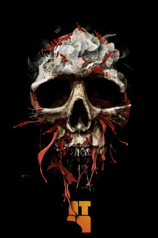 Skull illustration by Alberto Seveso 2