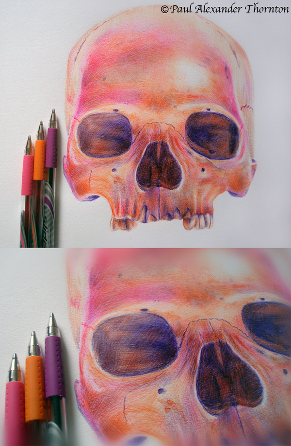 Ballpoint Pen Drawings by Paul Alexander Thornton 2