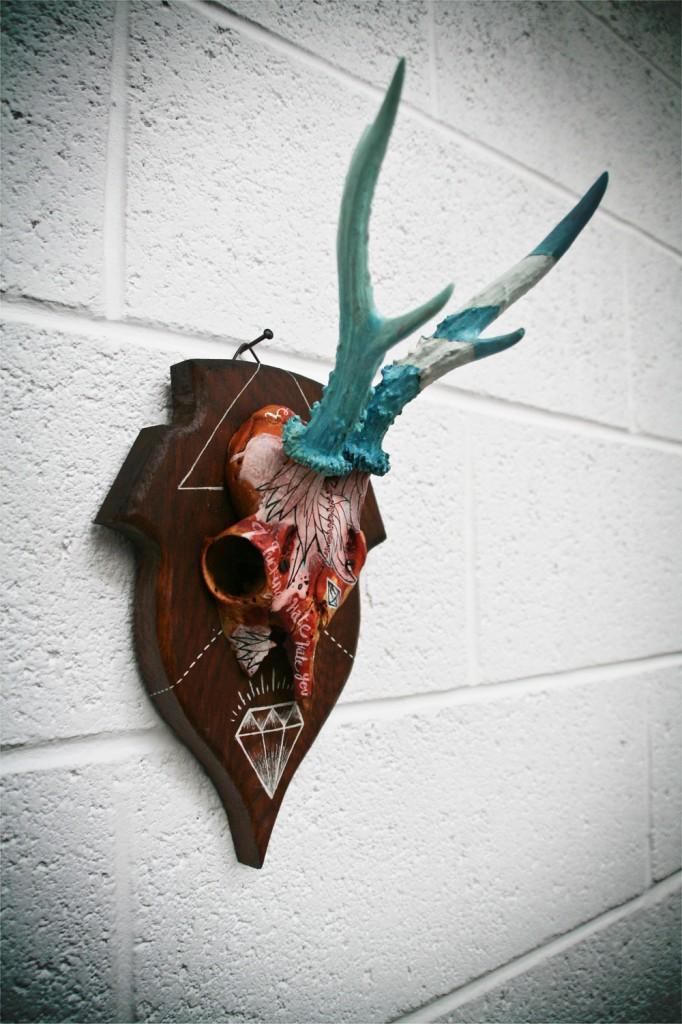 Roe Deer Skulls 1