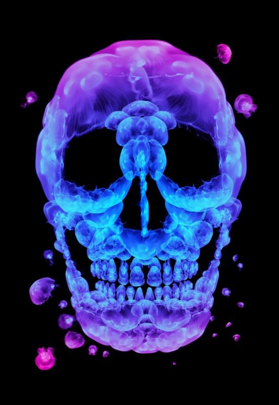 Skull Poster designs (2)