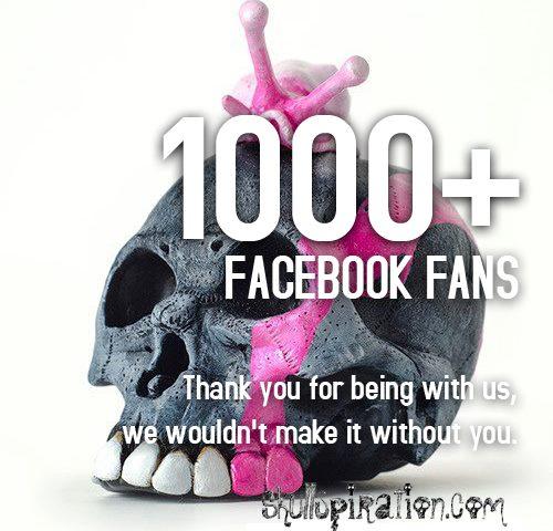 1000 Facebook Fans!