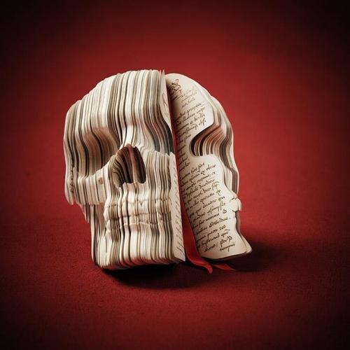Adventure Diary – Skull Book