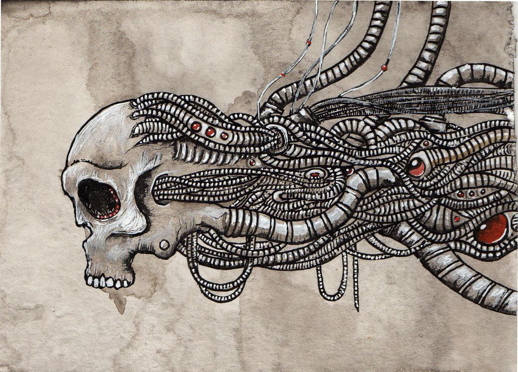 Skull illustrations 1
