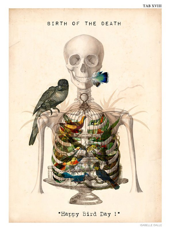 anatomical collages 2