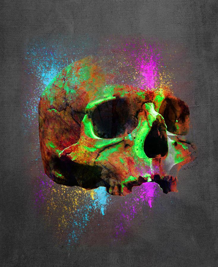Shamanic Skull