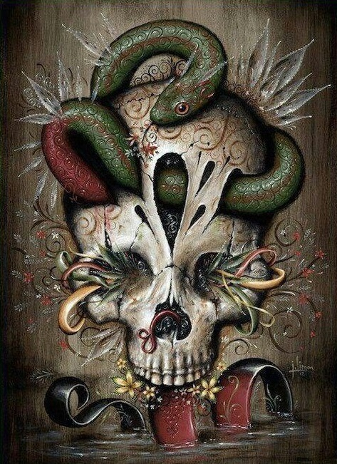 Skull paintings by Jason Limon 1