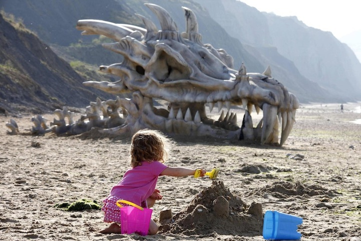 The Dragon Skull On Charmouth Beach 1