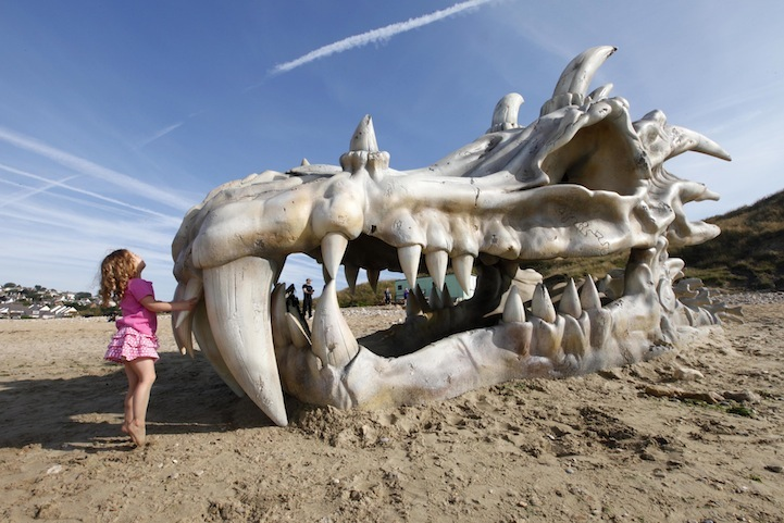 The Dragon Skull On Charmouth Beach