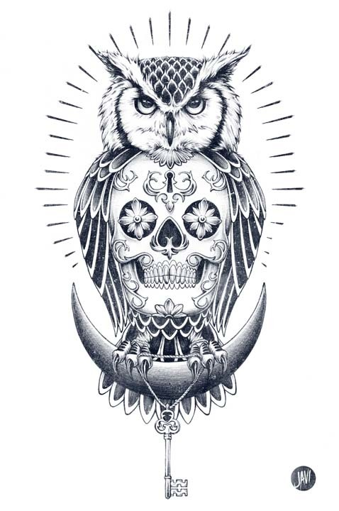 Owl and Skull illustration 1