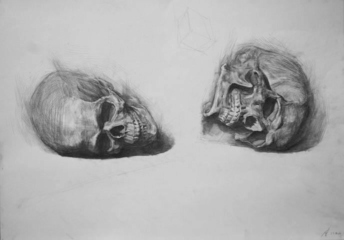 Skeleton drawings