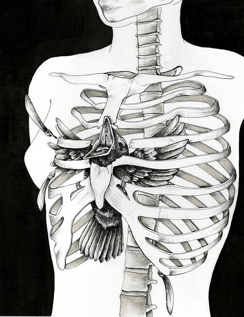 Skeleton illustration by Alejandra Alvergue