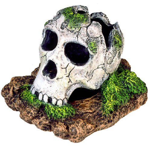 Broken Skull Aquarium Ornament
