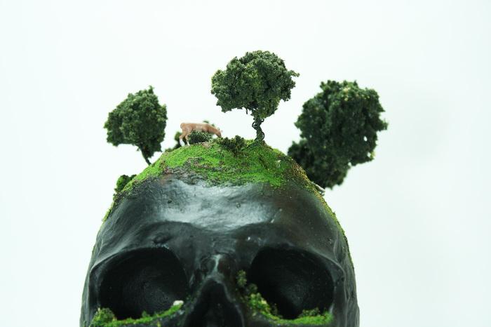 skull sculpture 1