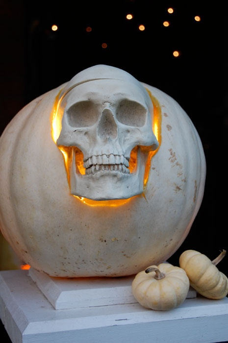 white skull pumpkin