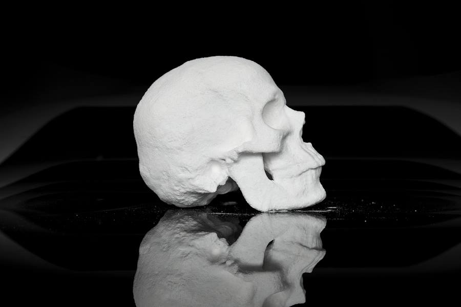 Human Skull Made Out of Cocaine 1