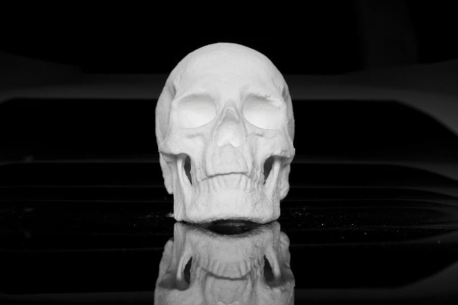 Human Skull Made Out of Cocaine