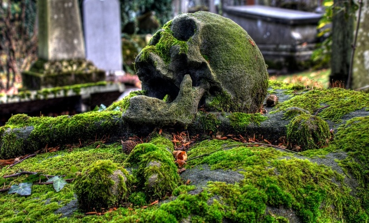 The Cemetery Photography by Tunebm 1