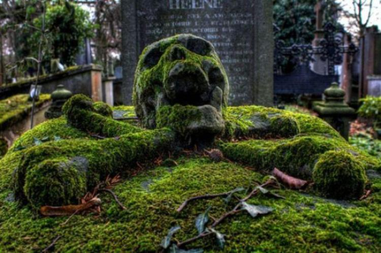 The Cemetery Photography by Tunebm