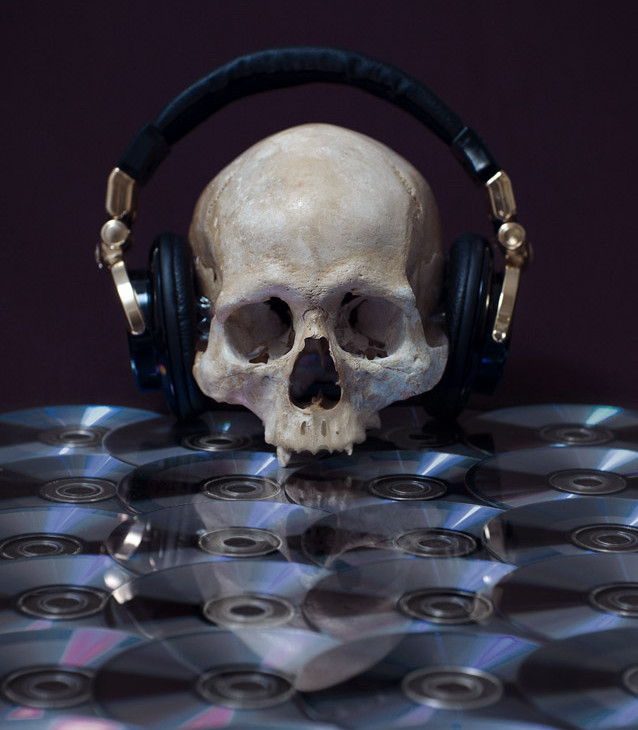 Skull Photographs by Mario Monforte (3)