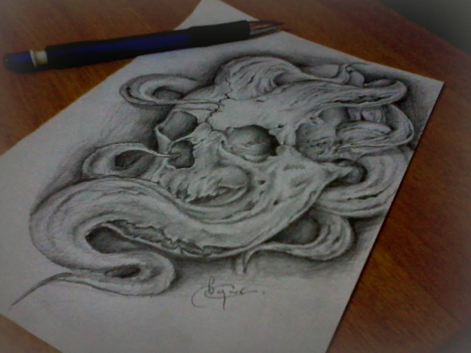 Skull illustration (6)