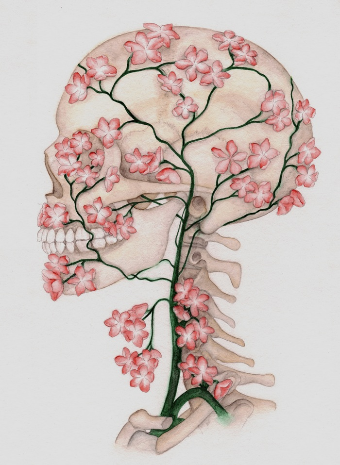 Flower Skull drawing