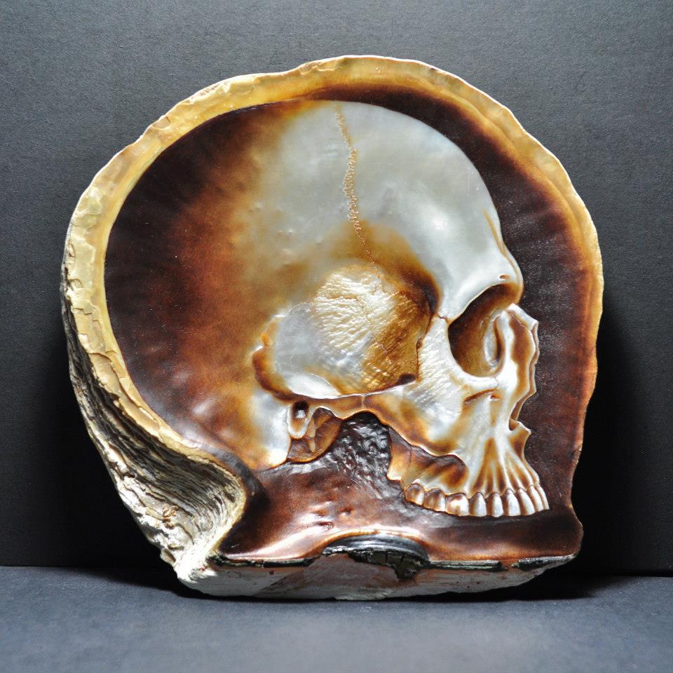 Skull Shell (2)