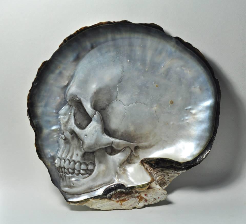 Skull Shell (3)