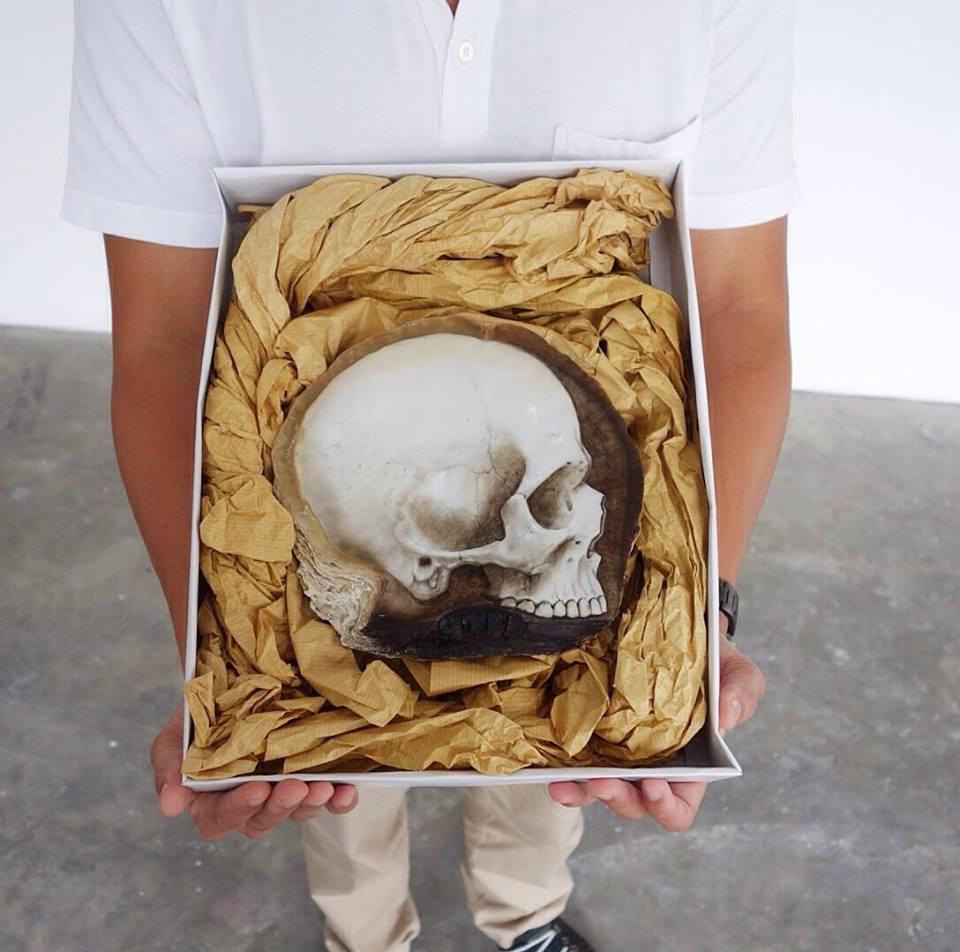Skull Shell (5)