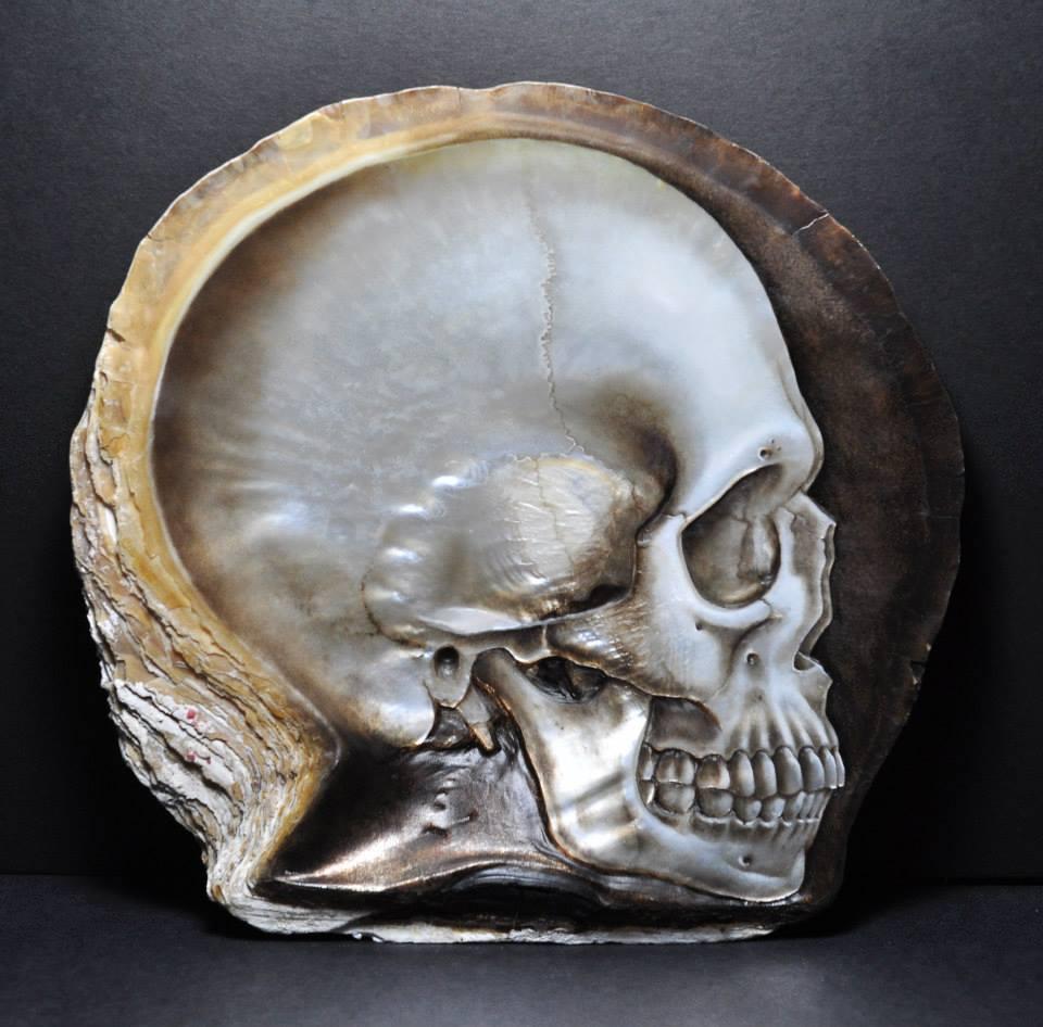 Skull Shell (6)