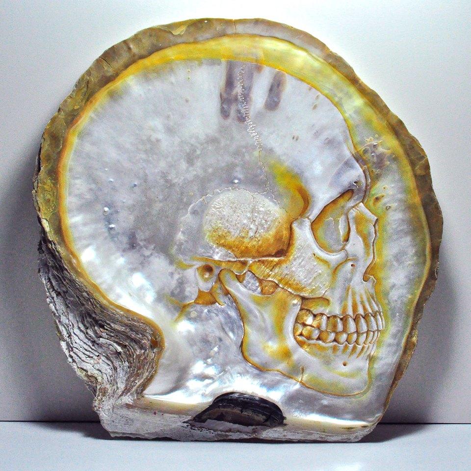 Skull Shell (7)