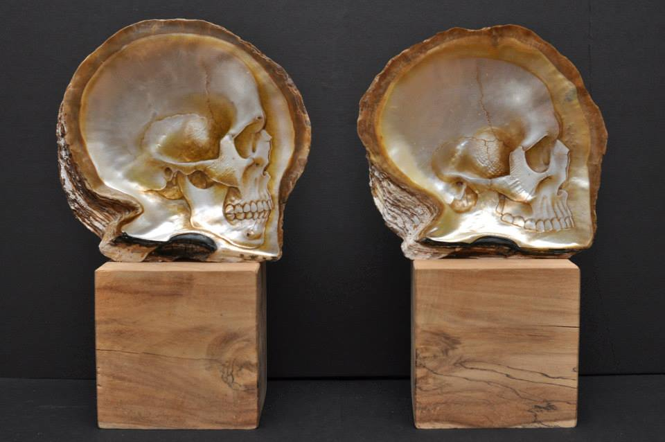 Skull Shells (2)
