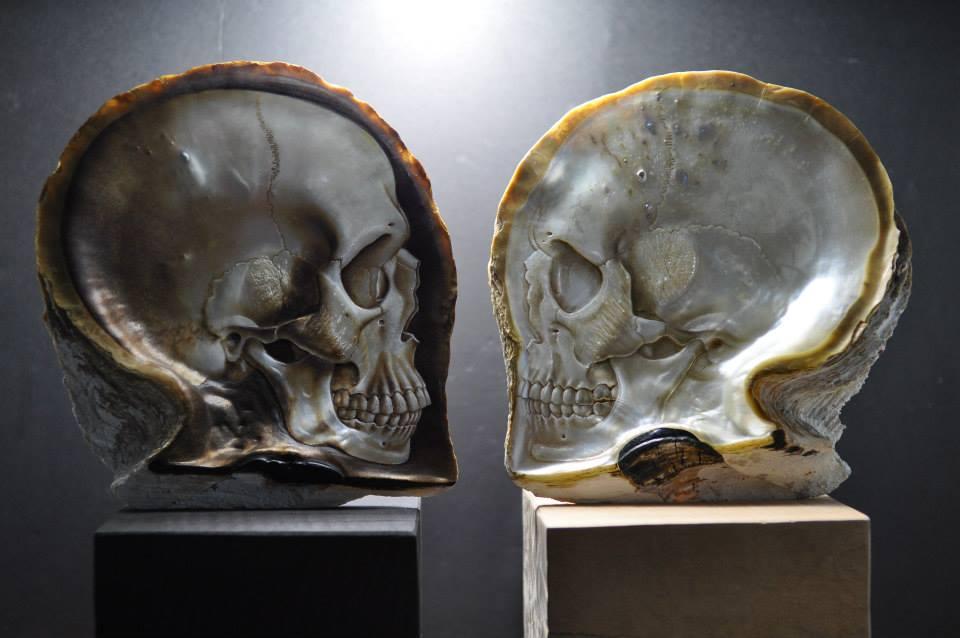 Skull Shells (3)