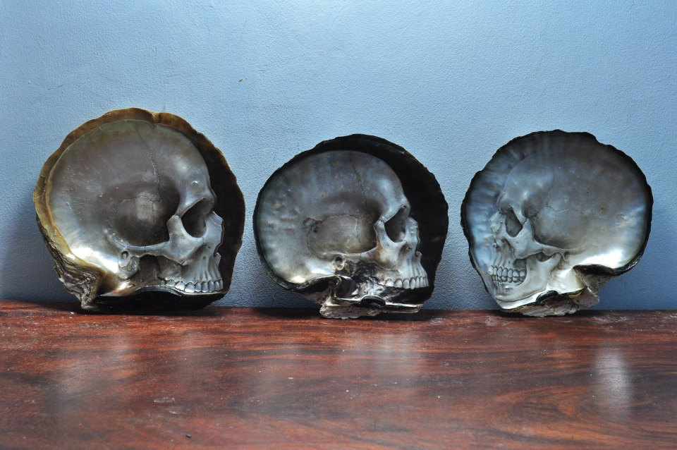 Skull Shells by Gregory Raymond Halili (3)
