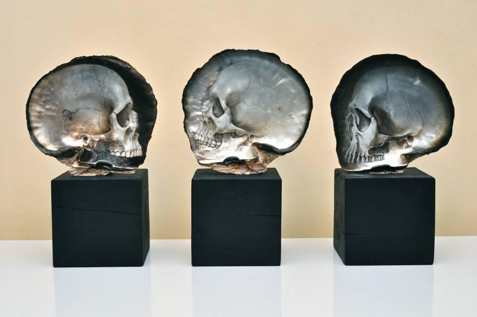 Skull Shells by Gregory Raymond Halili