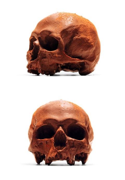 Chocolate Human Skulls