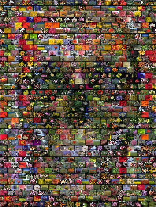 Skull Mosaic by Paul Van Scott (3)