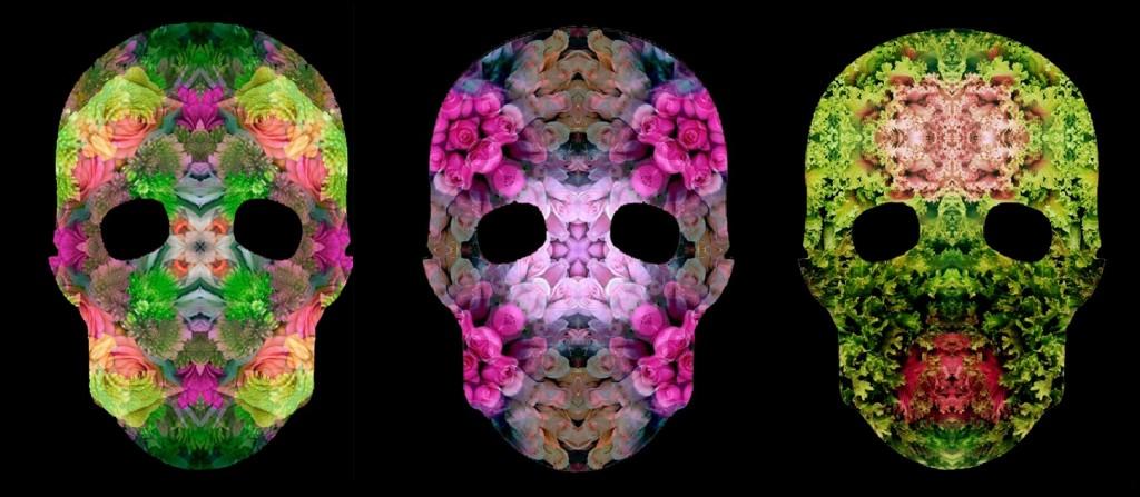 Skull Flowers by Mondo Curio