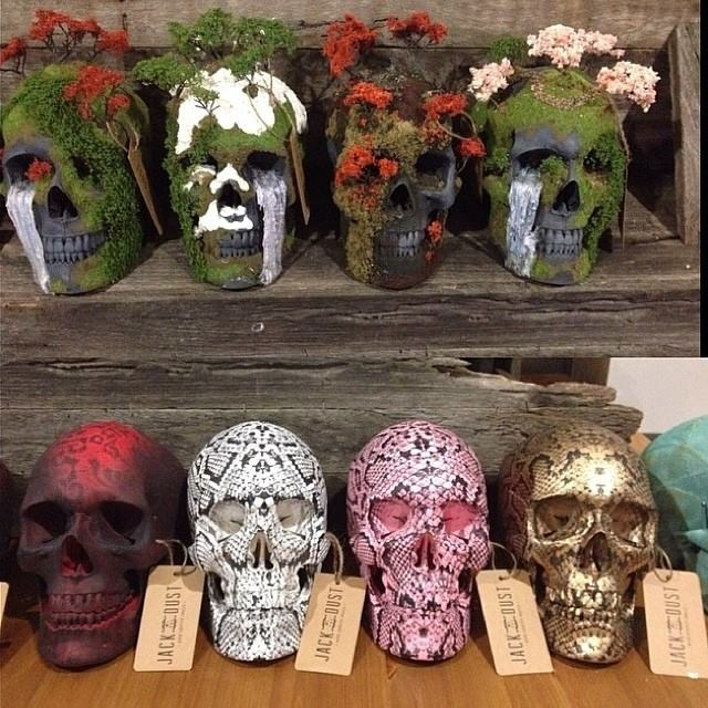 Skulls by Jack of the Dust (3)
