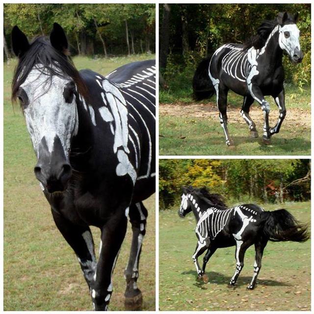 skeleton horse painting