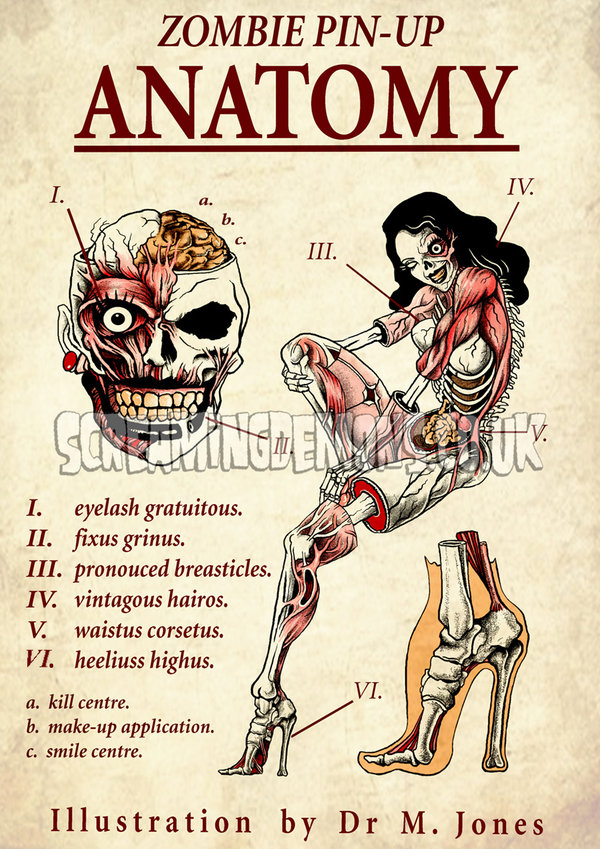 Pin-up Zombie Anatomy