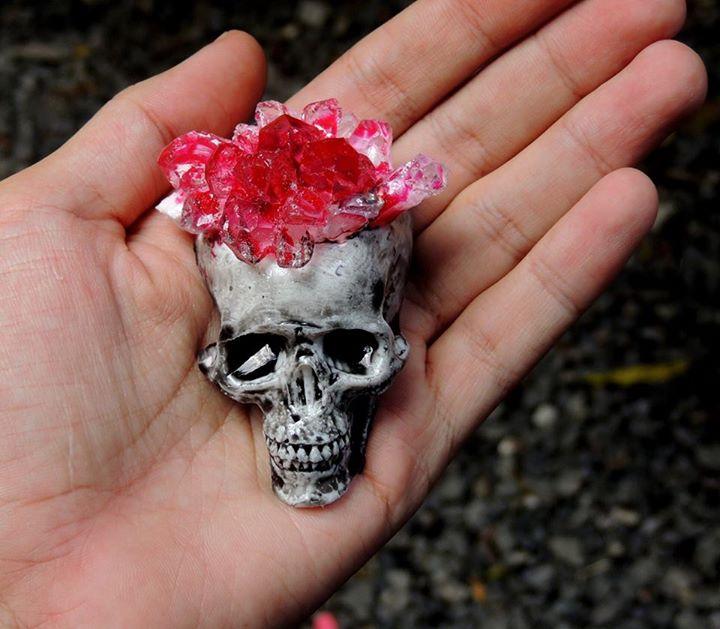 Pata E Perro Skull